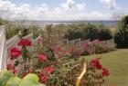 Jardin cloturé